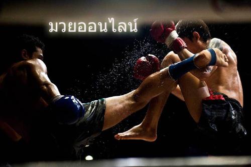 แทงมวย UFC