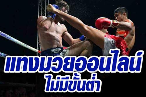 sbobetแม่ไม้มวยไทย